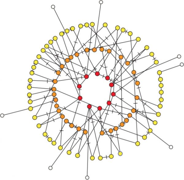 Self-organized cooperation network from a continuous cooperation game on an adaptive network.