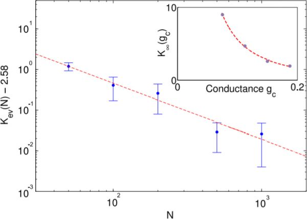 Scaling of the self-organized connectivity. The final value of connectivity approached in simulation follows a power-law depending on the number of neurons \(N\) and synaptic conductances \(g_c\) (inset). The values shown were found by averaging over 30000 iterations and 3 estimates of the connectivity \(K_\infty\).