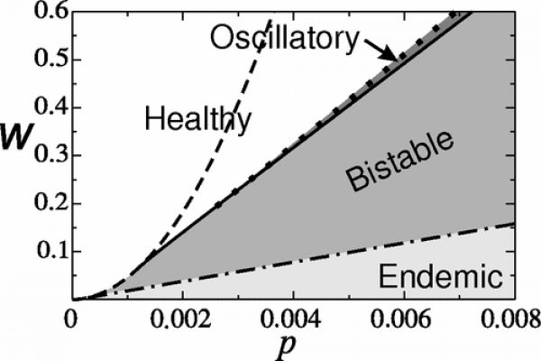 Two parameter bifurcation diagram showing the dependence on the rewiring rate \(w\) and the infection probability \(p\). In the white and light gray regions there is only a single attractor, which is a healthy state in the white region and an endemic state in the light gray region. In the medium gray region both of these states are stable. Another smaller region of bistability is shown in dark gray. Here, a stable healthy state coexists with a stable epidemic cycle. The transition lines between these regions correspond to transcritical (dash-dotted), saddle-node (dashed), Hopf (continuous), and cycle fold (dotted) bifurcations.