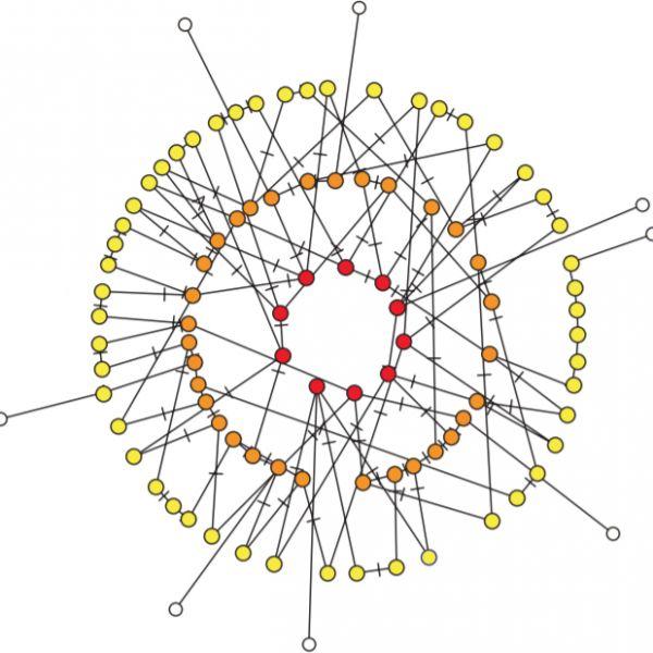 research topic visualization